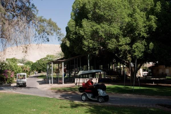 Le Kibbutz YotVata, oasis au milieu du désert du Neguev. les habitants se déplacent à vélo ou en voiturettes. © Juliette Robert