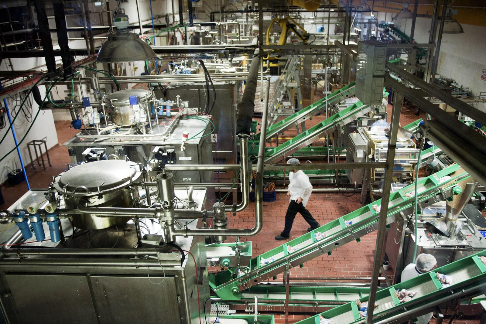 L'usine d'emballage des produits laitiers du kibbutz YotVata.