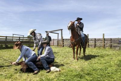 Justina, la fille de Diane Bohna, et ses cousines exécutent le marquage du bétail sous l'œil habitué de ces messieurs. ©Eugénie Baccot