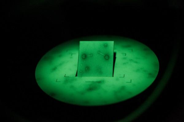 Des bactériophages, ou phages, obeservés au microscope électronique a transmission, au Centre Eliava, a Tbilissi. ©Juliette Robert/Haytham Pictures