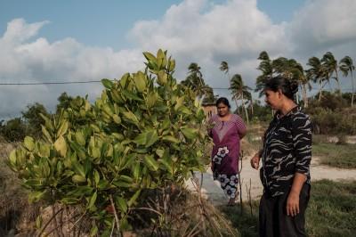 Shermila et Suseema, membres du comite du village de Keerimattawa-Kudirippuwa, observent les progrès du replantage de jeunes palétuviers près de leur village. ©Juliette Robert/Haytham/Youpress